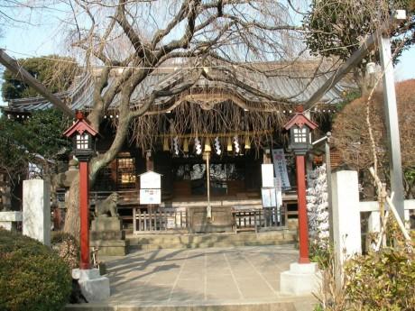 20080111tokyo_jussha046hakusan_honden.JPG 東京十社 白山神社本殿