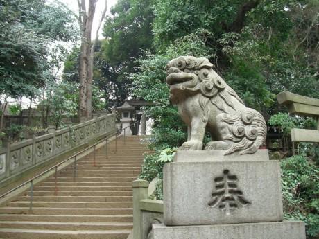20080111tokyo_jussha140hikawa_jinja.JPG 東京十社   氷川神社